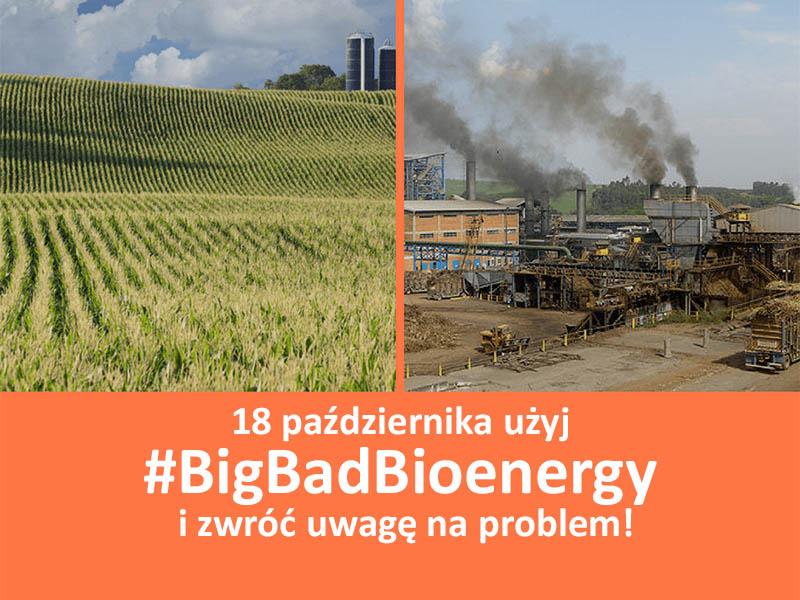 BigBadBioenergy